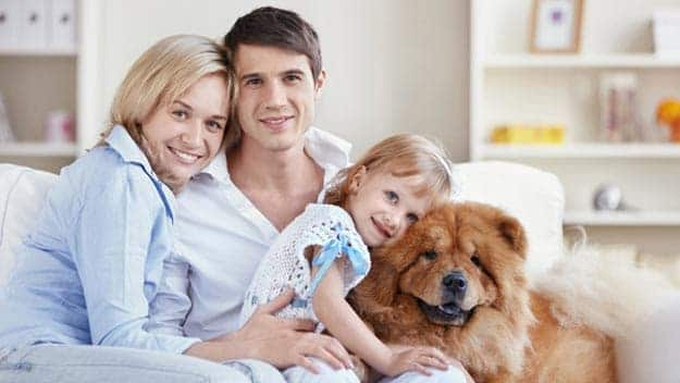 Wills & Trusts dog-young-family Direct Wills Olney